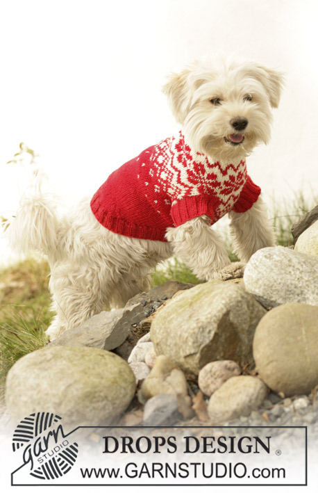 Nordic Paws / DROPS 102-42 - Knitted DROPS dog coat in Karisma with traditional Norwegian pattern.